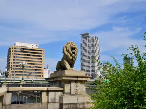 ライオンの橋